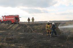 В Курской области зафиксировали первый в году пал сухостоя