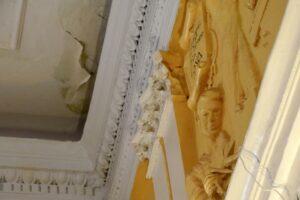Зал курского Дома Советов требует срочного ремонта