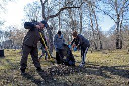 В Курской области 40 тысяч человек вышли на субботник