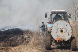 Курские спасатели сожгли сухостой в Центральном округе