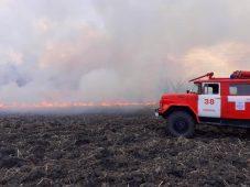 Курские спасатели тушили горящую траву 93 раза за сутки