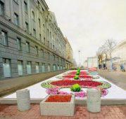 В центре Курска появятся декоративные кустарники