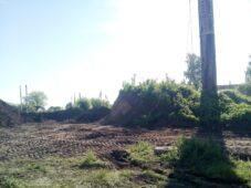 В Курской области башню с гнездом аистов снесли из-за аварийного состояния