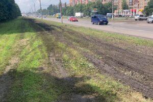 Куряне, пытаясь объехать залитую дорогу, уничтожили газон на Кулакова