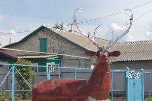 «Зоопарк»  во дворе