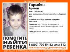 В Курской области ищут пропавшего 6-летнего мальчика
