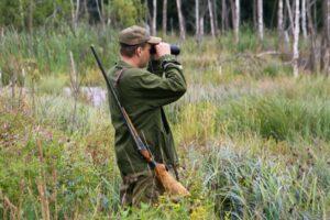 Особенности незаконной охоты