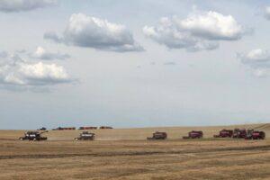 В 18 районах Курской области стартовала уборочная кампания