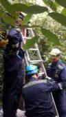 В Курске электрик погиб от удара током на опоре ЛЭП