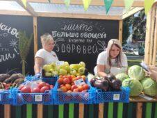 Фестиваль «Свое» в Курске дал старт снижению цен на «борщевой набор»