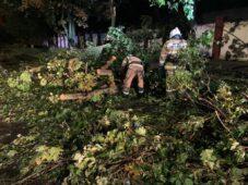 Курские спасатели продолжают устранять последствия урагана в городе