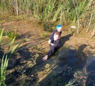 Ребенка пропавшего днем в Курском районе спасли из болота