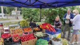 В Курске прошел очередной рейд по местам несанкционированной торговли